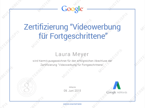 Google My Business Optionen