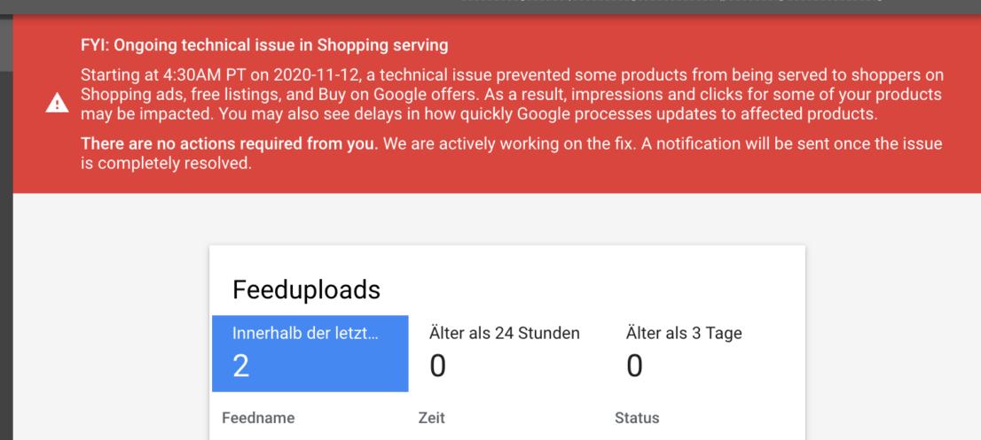 Google Merchant Center Fehler in der Ausspielung von Produkten