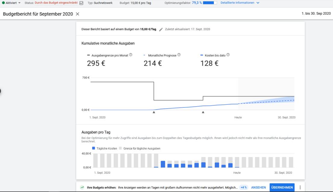 Google Ads Budgetbericht Kampagnenebene