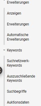 Google Ads - vertikale Navigation